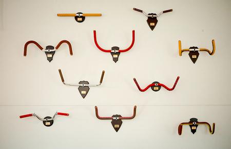 bike-antlers