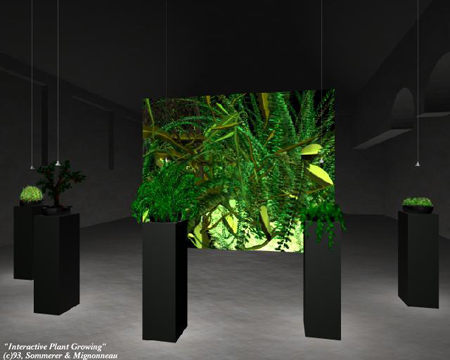 Interactive Plant Growing3