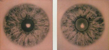 gary schneider iris