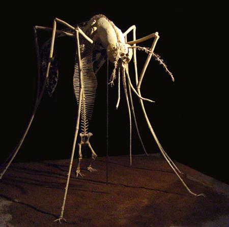 shen shaomin mosquito