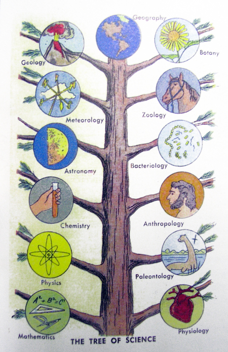 tree-of-science.jpg
